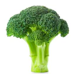 Разсад за броколи, 10 бр.
